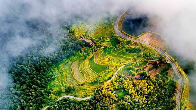 新華網航拍:黃柏山國家森林公園