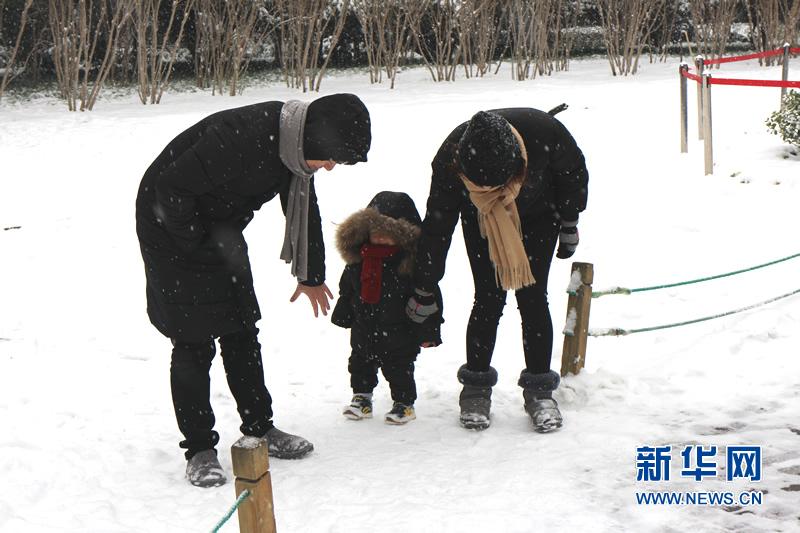 VR:雪舞中原 冬景美