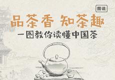 一图教你读懂中国茶