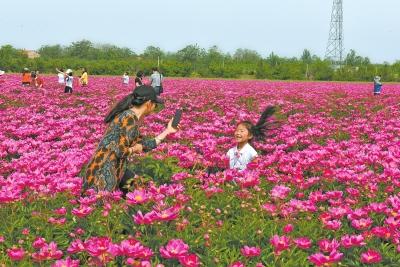 灵宝:乡村游乐翻天
