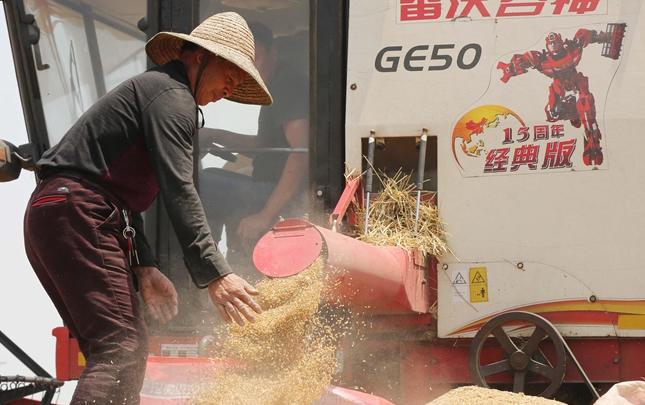河南麦收工作陆续展开