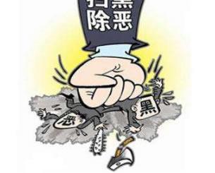 郑州市纪检监察机关推动扫黑除恶持续深入开展