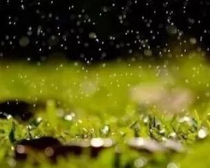 本周河南省多阴雨应做好秋作物晾晒和防雨收仓工作