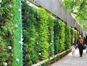 鄭州:拆墻透綠 共享庭院綠色