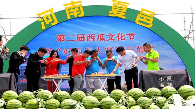 河南夏邑:樂享西瓜文化節