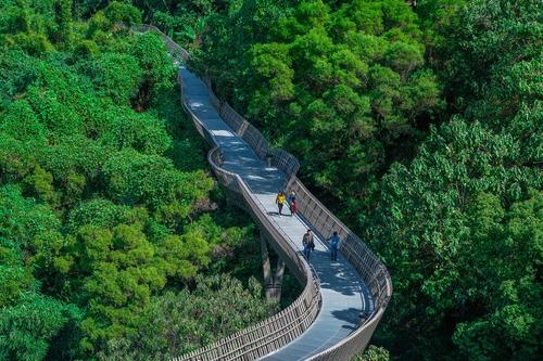 大別山國家森林步道途經河南省309公裏
