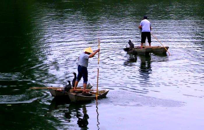 【微視頻】一舟一鷹一河翁