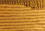 河南鄉村振興七大領域獲政策金融全面扶持