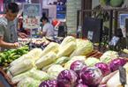 8月鄭州市居民消費價格同比上漲3.6%