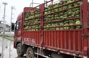 河南:抓好運輸保障服務疫情防控和復工復産