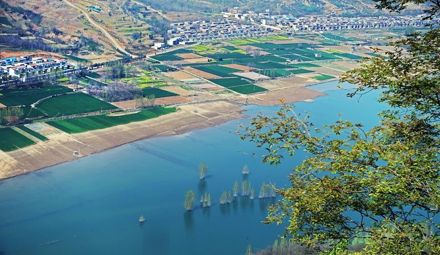 河南新安:高標準打造黃河生態廊道